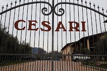 91 Cesari